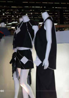 200309 Collection for Dow Premierevision 05